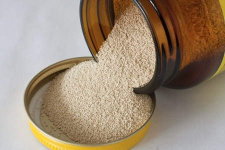 dry bakers yeast